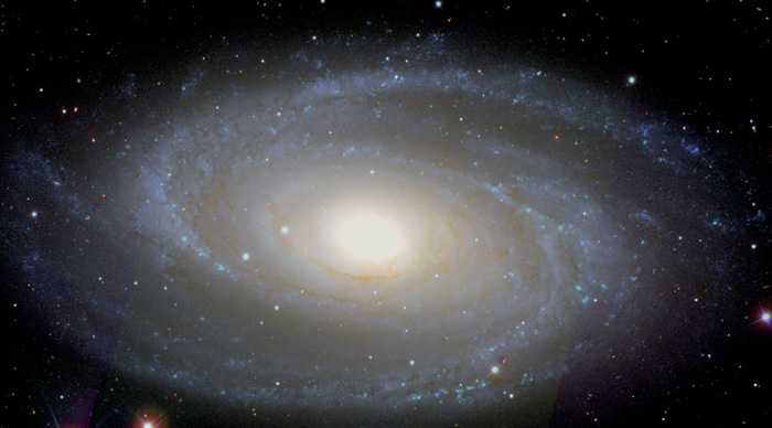 The bright spiral galaxy Messier 81